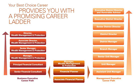 career path choices Explore nearly 1,000 occupations and careers, take a career assessment, and search the fastest growing careers.